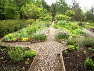 Jardin de simples - Herbes aromatiques et condimentaires