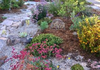 Paillis minéraux et végétaux dans un massif