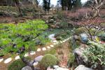Diaporama : Créer un jardin japonais