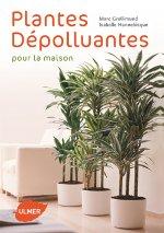 Plantes dépolluantes pour la maison : couverture