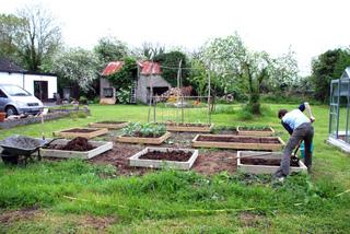Apport de compost au potager au printemps