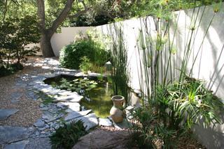 Plantes de berge : que planter au bord d\'une pièce d\'eau ?