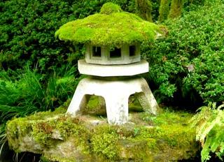 Cultiver et planter les mousses d coratives au jardin - Jardin japonais mousse ...