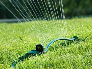 Arrosage de la pelouse avec l'arroseur oscillant