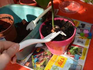 Set de jardinage urbain Fiskars - Griffe