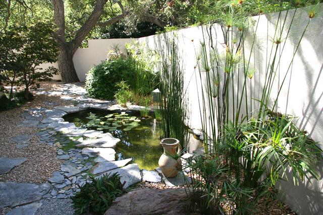 Plantes de berge que planter au bord d 39 une pi ce d 39 eau - Que mettre autour d une piscine ...