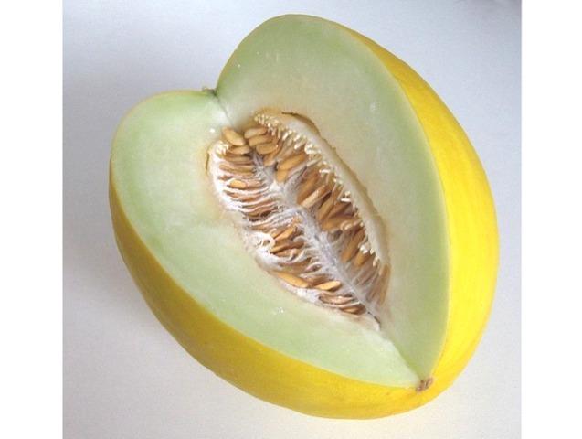 comment savoir si un melon est mur au jardin design de maison. Black Bedroom Furniture Sets. Home Design Ideas