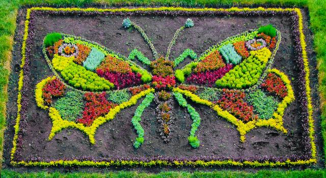 Mosaiculture