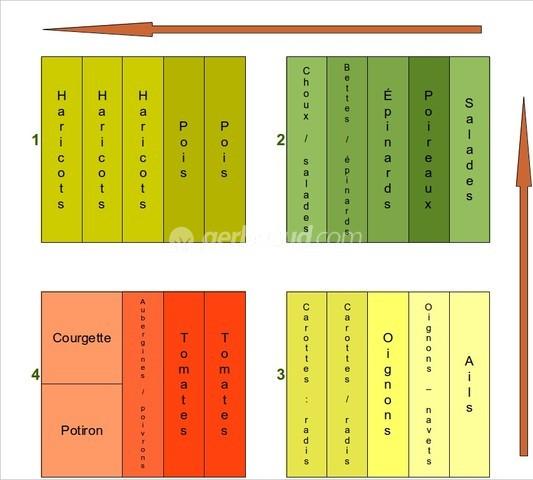 Calendrier Plantations Potager.Rotation Des Cultures Au Potager Des Exemples