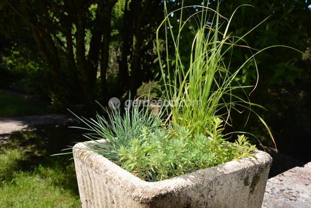 fleurs balcon plein soleil trendy with fleurs balcon plein soleil free quelles plantes pour. Black Bedroom Furniture Sets. Home Design Ideas