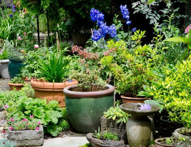 Jardin de ville conseils de cr ation d 39 entretien choix for Jardin urbain wavre 2015