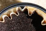 Marc de café : utilisations