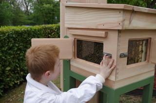 Bee-Pass®, une ruche pour observer les abeilles en toute sécurité
