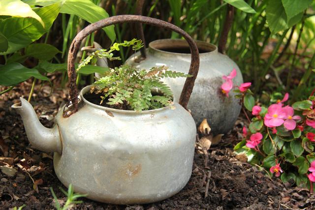 Esprit récup' (Créer un jardin de curé)