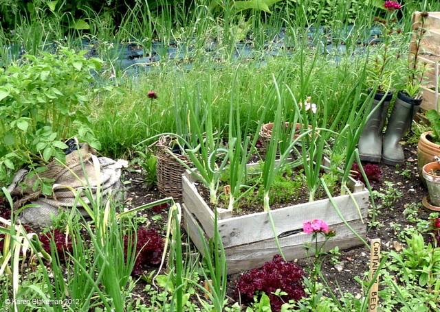 Recycler, récupérer (Créer un jardin de curé)