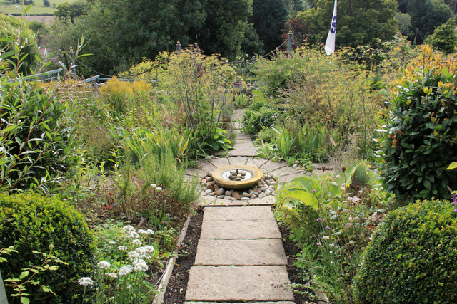 plantes caract ristiques jardin cure tout. Black Bedroom Furniture Sets. Home Design Ideas