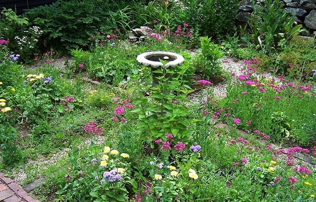 jardin + cure | tout