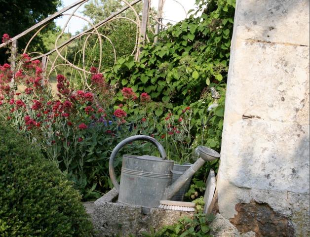 Jardin cure tout for Creer un jardin sans arrosage