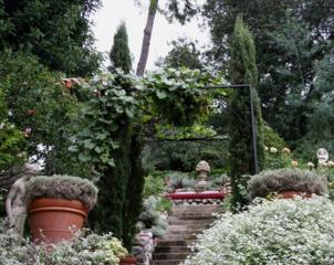 Végétation étagée autour d'un escalier