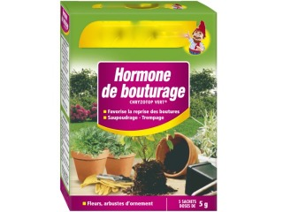 photo L'hormone de bouturage