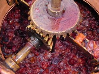 Alcools : à partir de quelles matières végétales sont-ils fabriqués ?