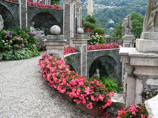 Bégonias, hortensias et topiaires de buis (Un jardin à l'italienne)