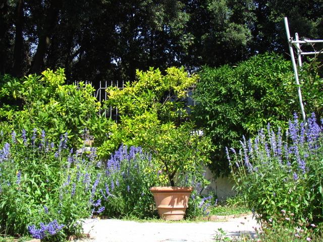 Jardin italienne tout - Jardin a l italienne ...