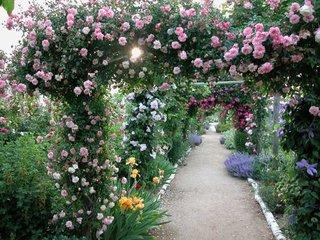 Jardin de Morailles / D.R.