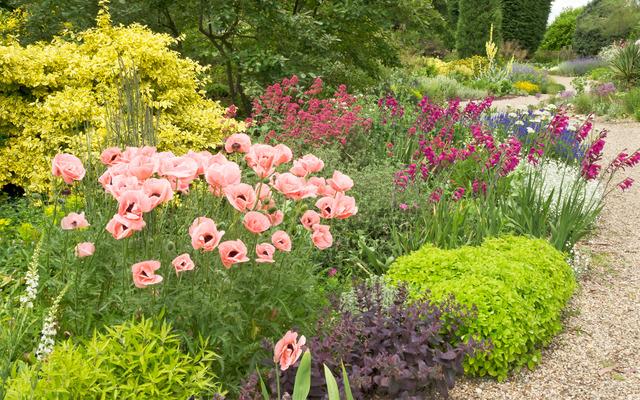 Jardin sec l 39 anglaise jardins secs et rocailles for Jardin anglais mixed border