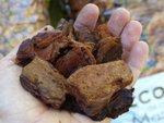 Ecorce de pin : utilisation, intérêt et inconvénients