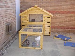 Lapins o et comment installer un clapier for Avoir un lapin a la maison