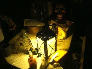 Plantes et sorcellerie : magie, potions et propriétés mystérieuses