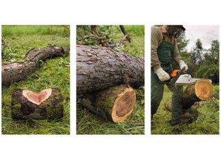 Utilisation d'un billot pour couper un tronc instable