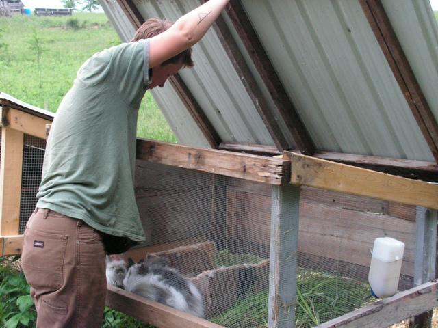Lapins o et comment installer un clapier for Clapier lapin fait maison
