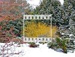Des jardins beaux en hiver