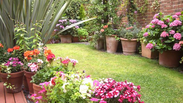 Jardin en pot version printemps jardins de pots - Pot de couleur pour jardin ...