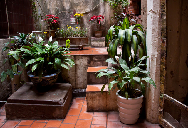 Terrasse exotique