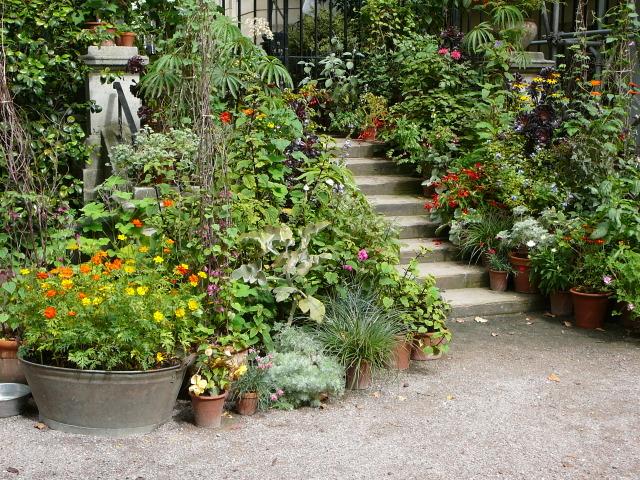 Pots installés en nombre le long d\'un escalier (Jardins de pots)