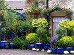 Jardins de pots