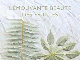 L'émouvante beauté des feuilles - Livre de Gérard Jean