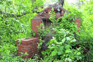 Jardin à l'abandon, terrain en friche : nettoyage et préparation du sol