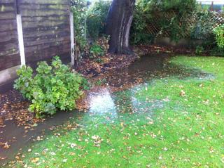 Jardin au sol mal drainé