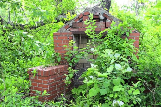 Jardin l 39 abandon terrain en friche nettoyage et pr paration du sol for Grand jardin en friche
