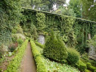 Jardin en pente : aménagement, plantes...