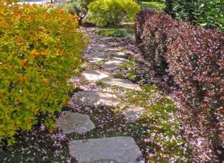 les diff rents mat riaux envisageables pour les all es du jardin. Black Bedroom Furniture Sets. Home Design Ideas