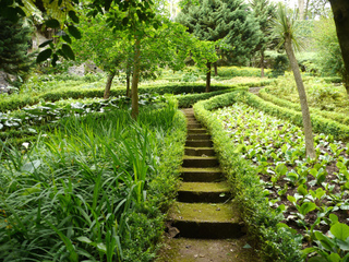 jardin en pente am nagement plantes. Black Bedroom Furniture Sets. Home Design Ideas