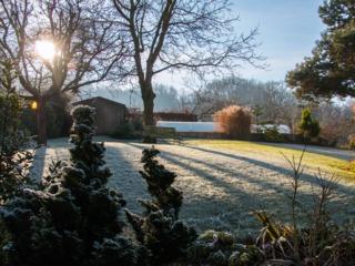 Jardin gelé un matin d'hiver