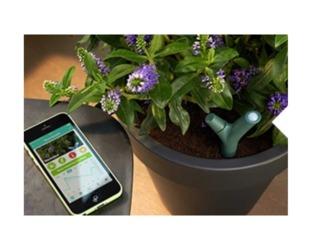 Capteur connecté pour plante en pot / encuentroedublogs