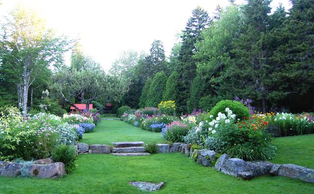 Large allée garnie de pelouse (Allées de jardin)