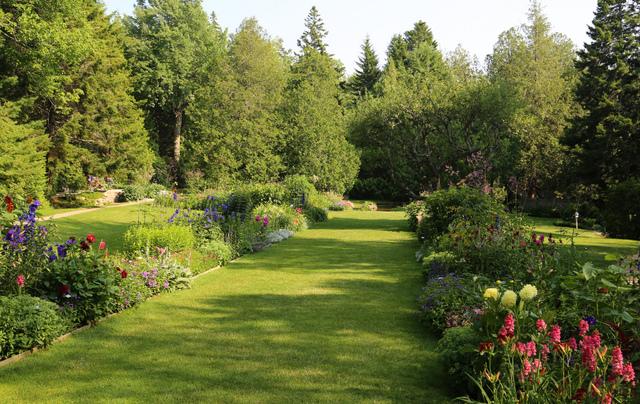 Pelouse chemin tout - Allee de jardin facile ...